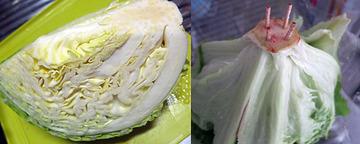 349-01_爺飯14 葉物の季節.jpg