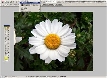 028-02_07_auto_revel_1.jpg