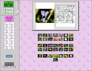 046-02_野の花図鑑2.jpg