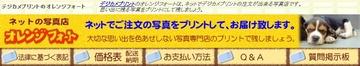203-01_オレンジフォト.jpg