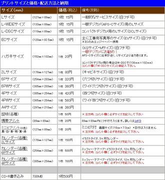203-02_オレンジフォト.jpg