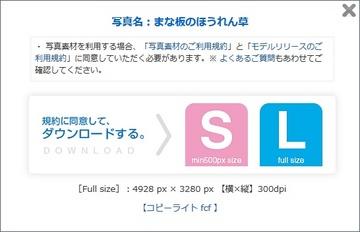 355-03_PAKUTASO.jpg